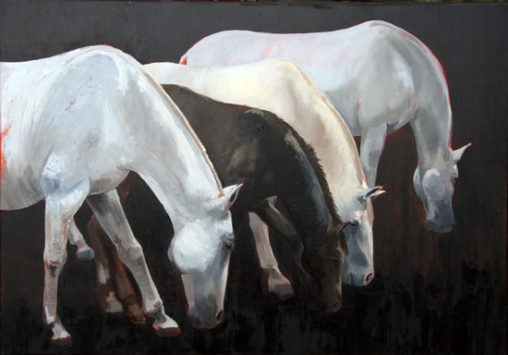 painting horses lipica