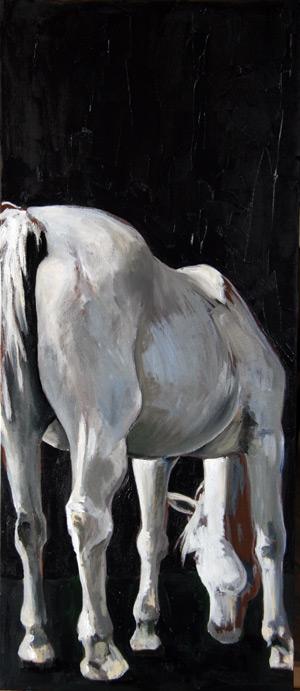 white_horse_grazing